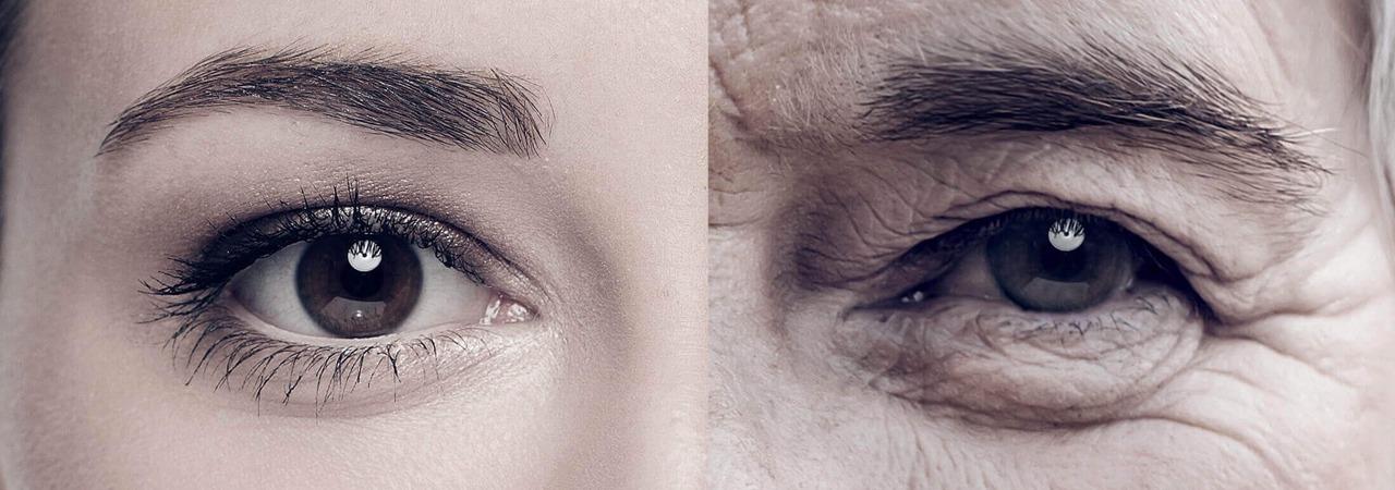 retardar o envelhecimento